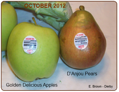 Golden Delicious Apple and D'Anjou Pear
